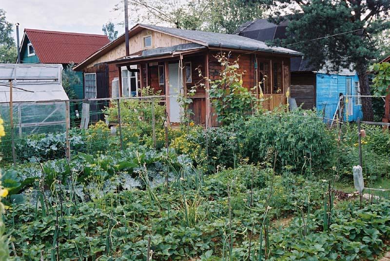 Усадьба сад огород своими руками