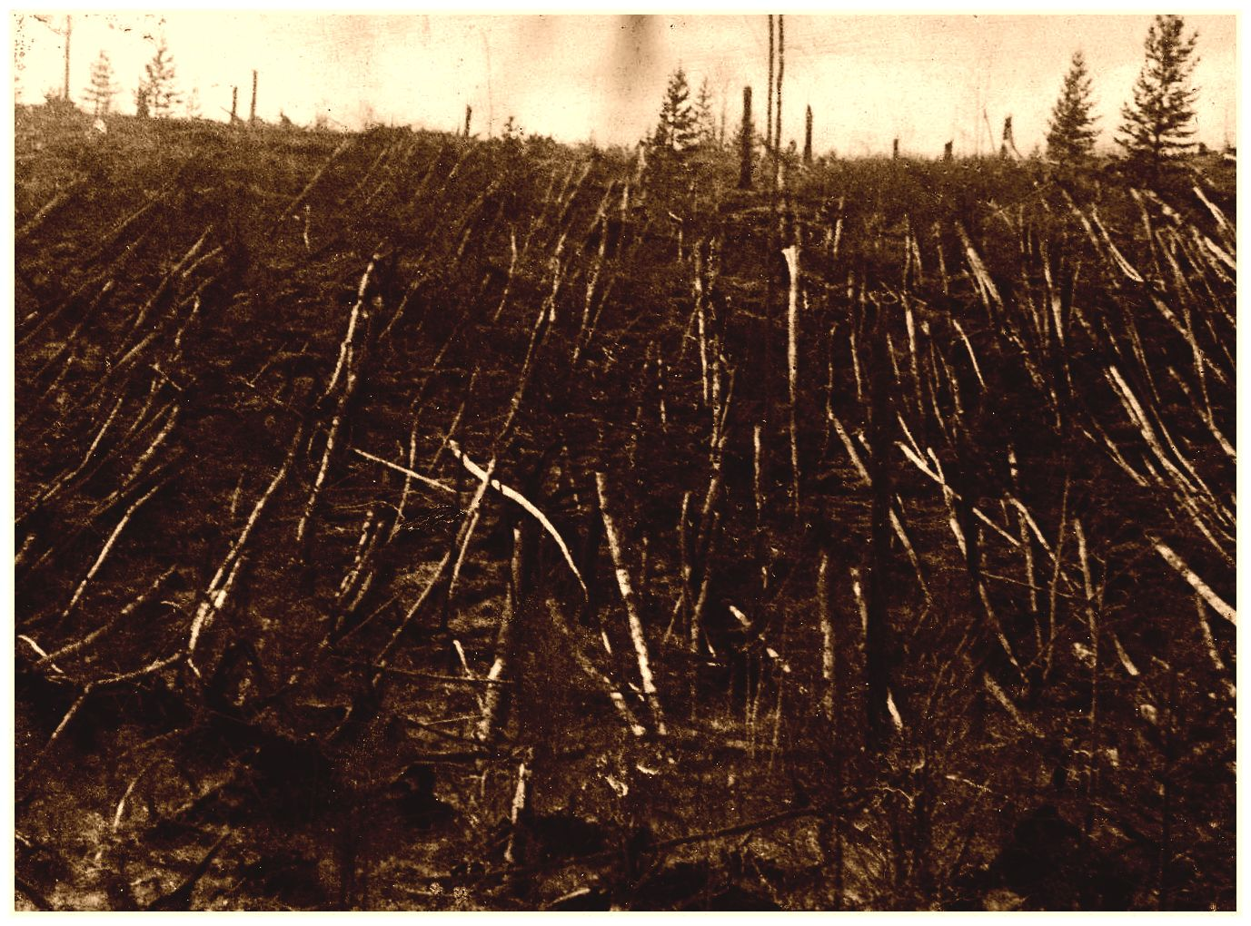 http://www.sott.net/image/image/6250/full/tunguska-photo.jpg