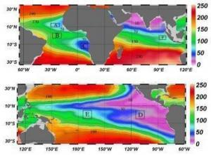 oxygen concentrations in the worlds oceans