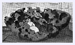 Kids in Meteorite