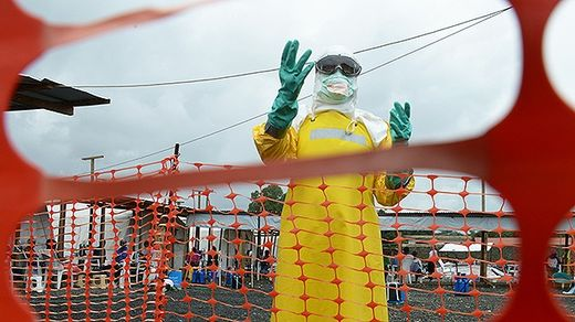 Ebola scare motivating interest in immune system functioning and alternative therapies
