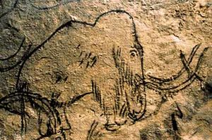 mammoth wall drawing