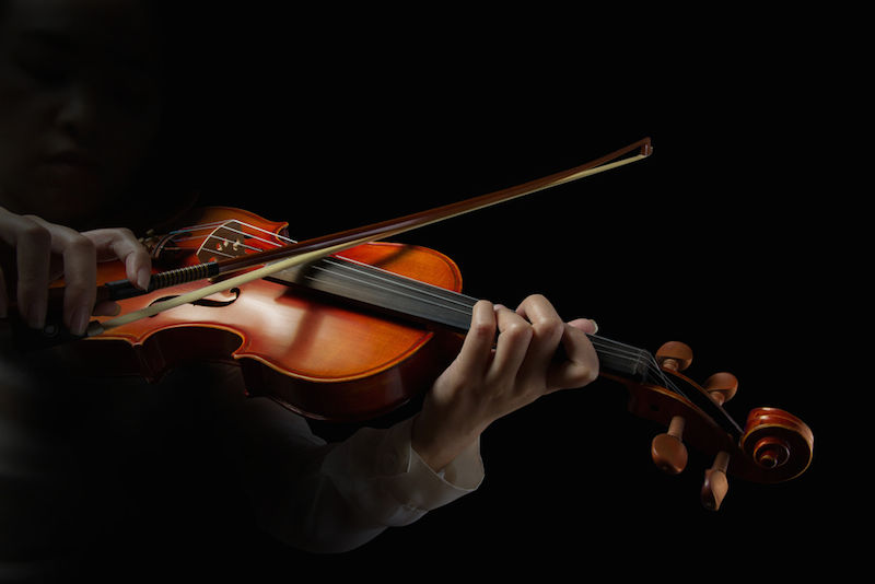 history of the stringed instrument essay