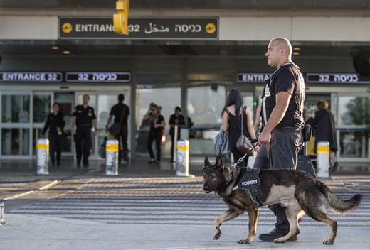 security officer leads a dog
