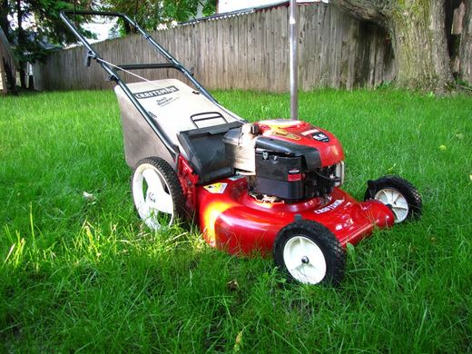 Tennessee woman sentenced to jail for not mowing her lawn