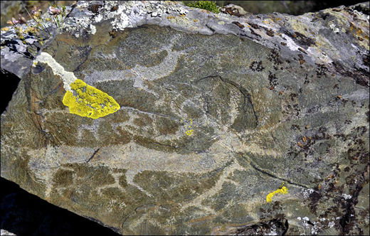 Welcome to the Altai Mountains, nature's own ancient gallery: Thousands of 5,000 year old rock paintings