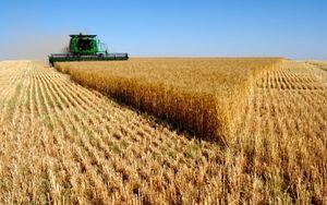 russian harvest