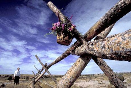 flowers_Matthew shepard