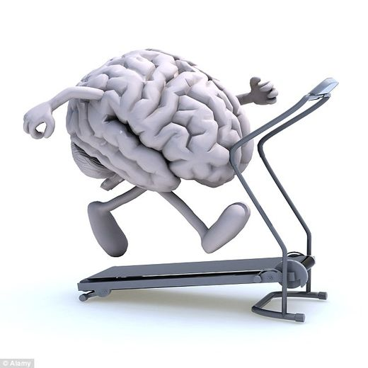 Research shows you can build a better brain with exercise and environmental enrichment