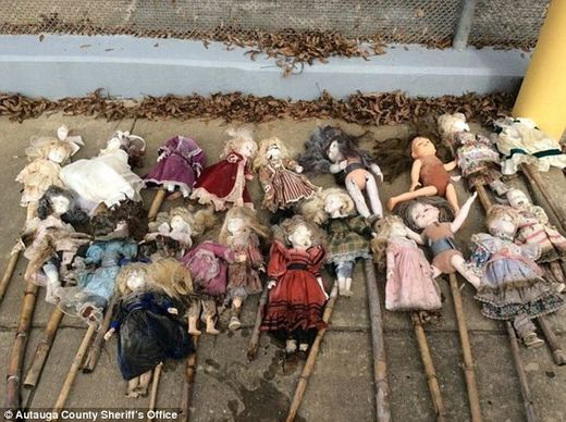 Twenty-one porcelain dolls on bamboo stakes found in Alabama swamp, some missing heads