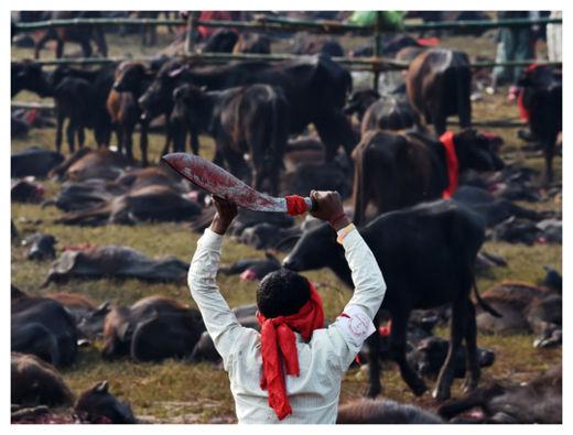 Hindu Festival_3