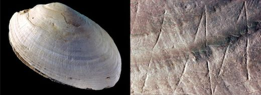 oldest shell carvings