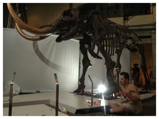 Mastodons_2