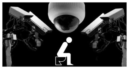 Toilet Spying