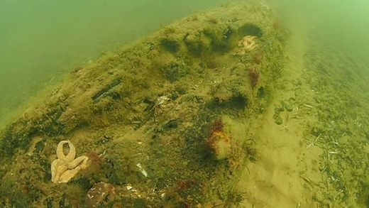 Ancient underwater forest discovered off Norfolk coast, UK