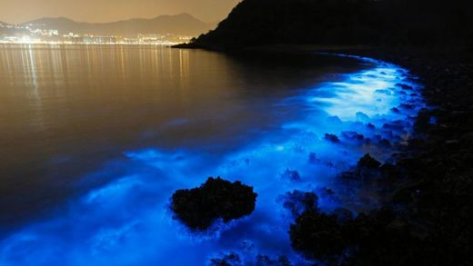 This Thursday, Jan. 22, 2015 photo made with a long exposure shows the glow from a Noctiluca scintillans algal bloom along the seashore in Hong Kong. The luminescence, also called Sea Sparkle, is triggered by farm pollution that can be devastating to mari