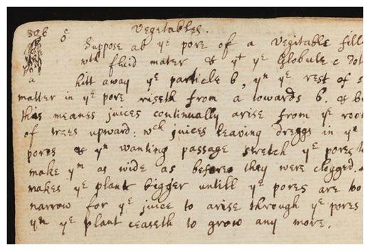 Newton's Text