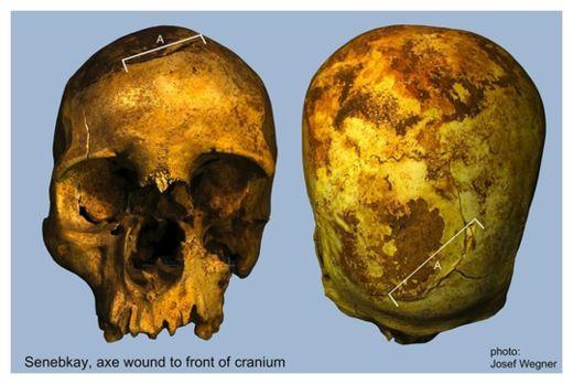 Senebkav Skull