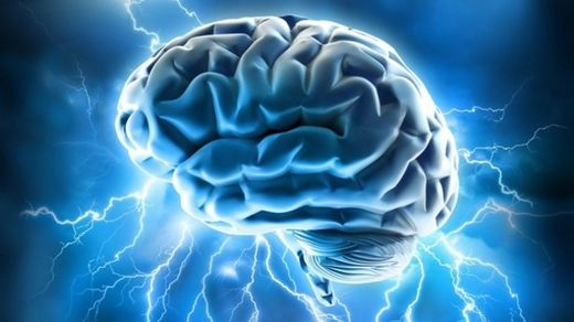 Brain ages less than previously thought