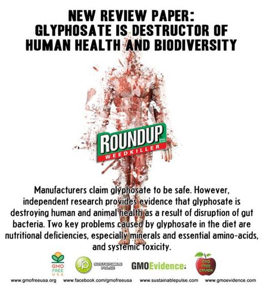 Monsanto: Destroying the brains and health of everyone
