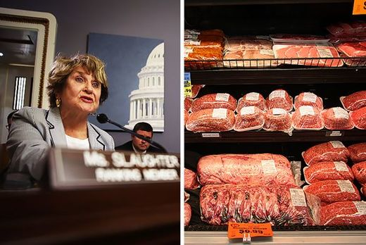 Louise Slaughter: Congress' only Microbiologist is trying to regulate the drugs used on industrial livestock farms