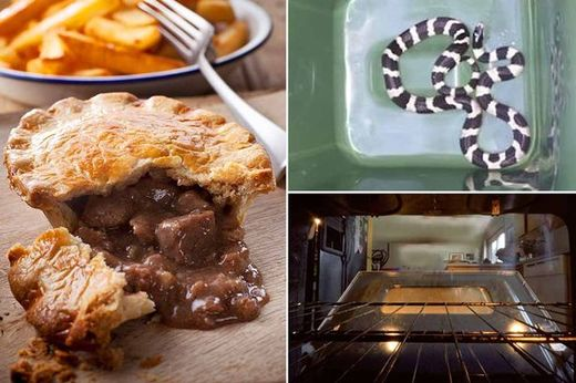 Pensioner finds snake in his oven in Halliwell, UK