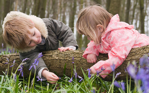 Children's knowledge of nature is dwindling, UK study finds