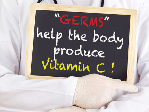 Gut flora helps the body produce vitamin C
