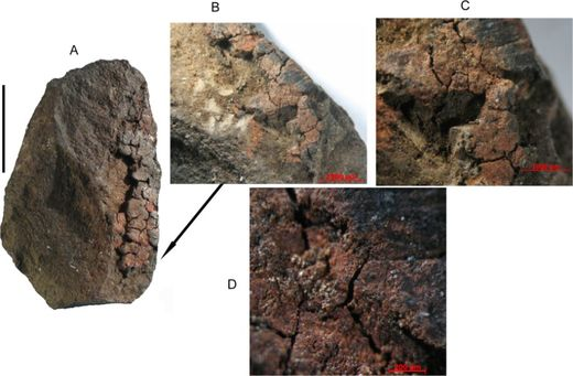 Ancient South Africans used milk-based paint over 49,000 years ago