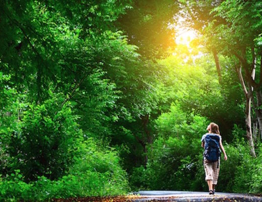 Feeling down? Take a hike - walking in nature lowers depression