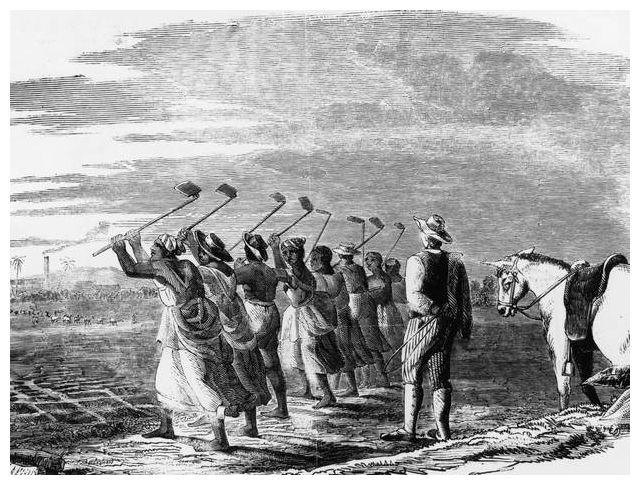 Vast scale of British slave ownership revealed