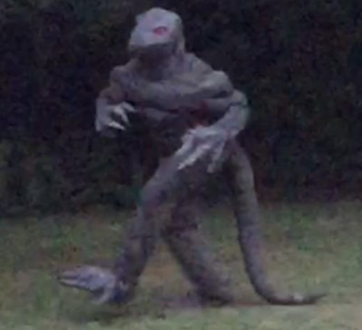 Has Bishopville's 'lizard man' returned? Photo apparently shows fabled South Carolina creature