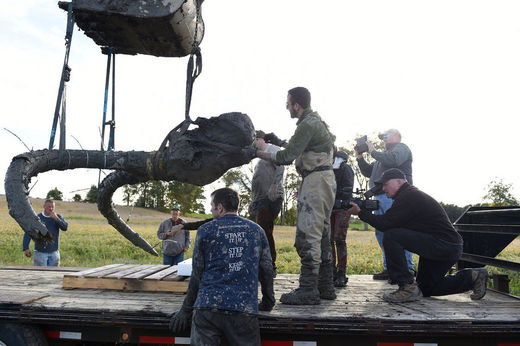 Woolly mammoth bones uncovered by Chelsea, Michigan farmer