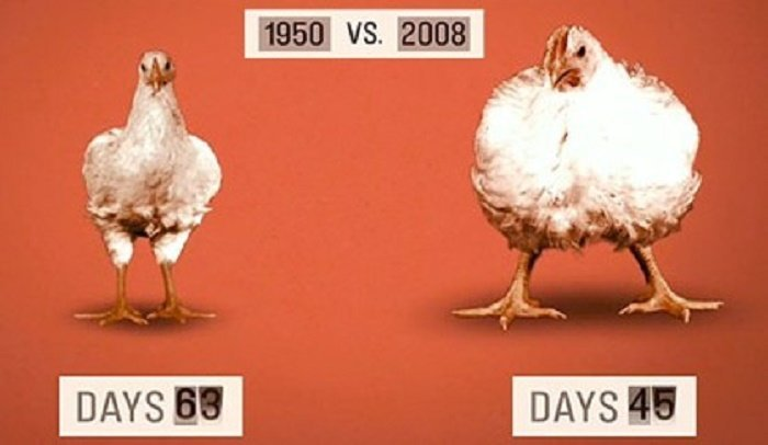 Is today better than it was 50 years ago?