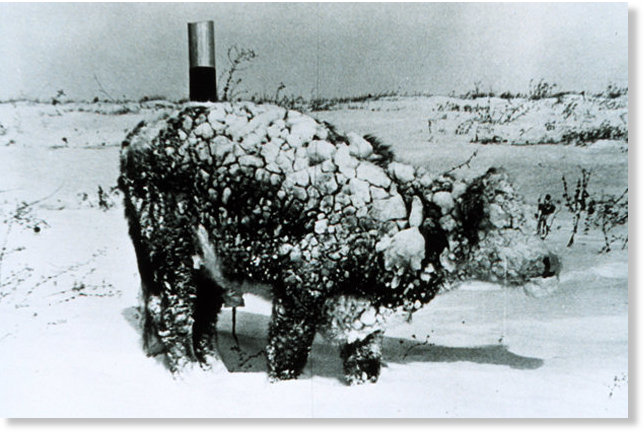 Snow Blizzard kills more than 30,000 dairy cows in Texas ...
