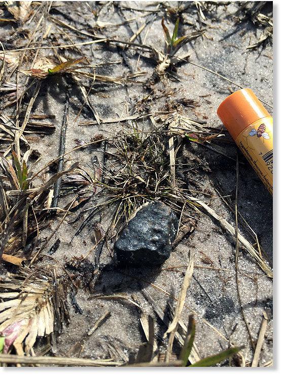M t ore floride janvier 2016 - Meteore et meteorite ...