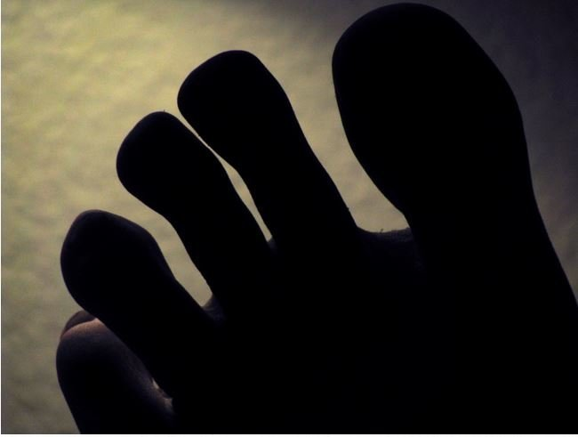 Why, exactly, do humans have toes? -- Science & Technology ...