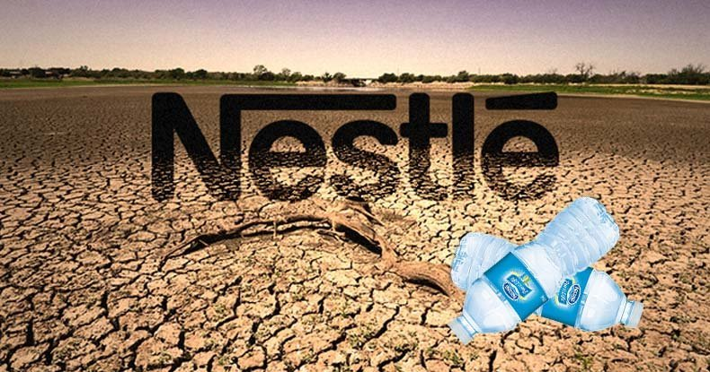 Image result for Nestle's Social Irresponsibility