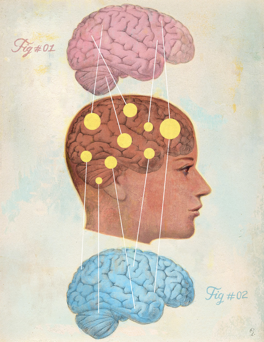 the cognitive difference between boys and girls This is a tricky myth because differences that are believed to exist between girls and boys may have a differences in cognitive ability between men and.
