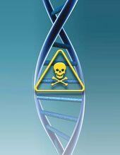MMS : Miracle Mineral Solution ou Cheval de Troie ? Votre corps et votre ADN décident dans Sauvez la planète ! (ou ce qu'il en reste) (+70) dna