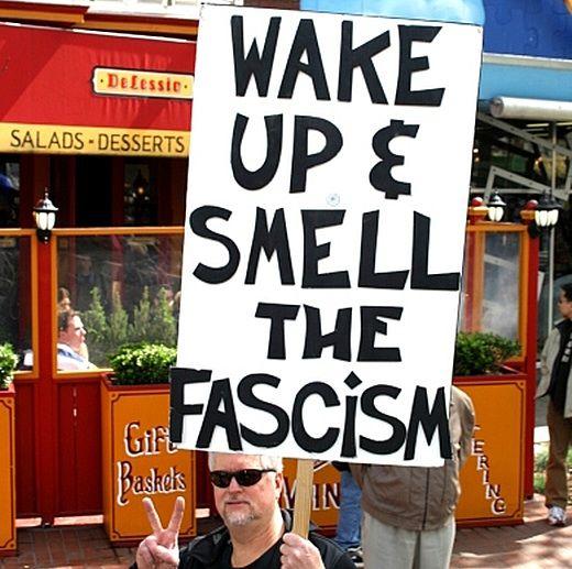 http://www.sott.net/image/image/s2/44437/full/090630fascism.jpg