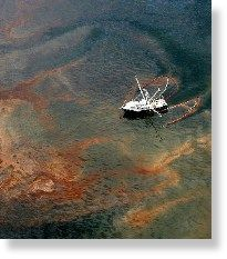 oil,shrimp,boat
