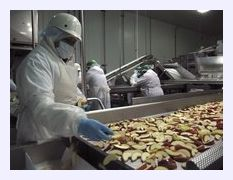 GMO_apples.jpg
