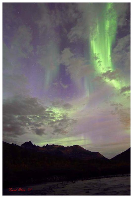 http://www.sott.net/image/image/s4/80431/full/Frank_Olsen_IMG_4975_1_2_13156.jpg