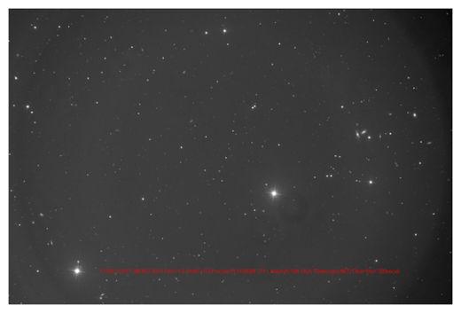 Comet Moss