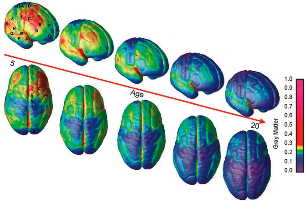 Boost brain power drug photo 1