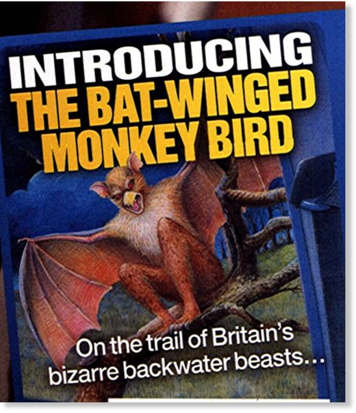 Bat-Winged Monkey-Bird III