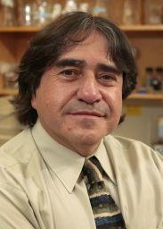 Fernando Gomez-Pinilla brain sugar