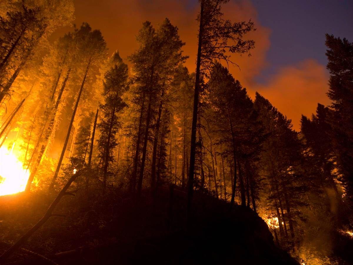 Fire Crews Battle Wildfires Blazing Across Western US