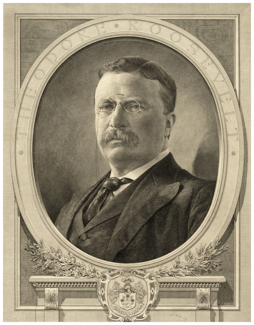 teddy roosevelts personality Theodore roosevelt has a stirring biography that matches his larger-than-life personality the nobel peace prize-winning us president was a champion of wilderness.